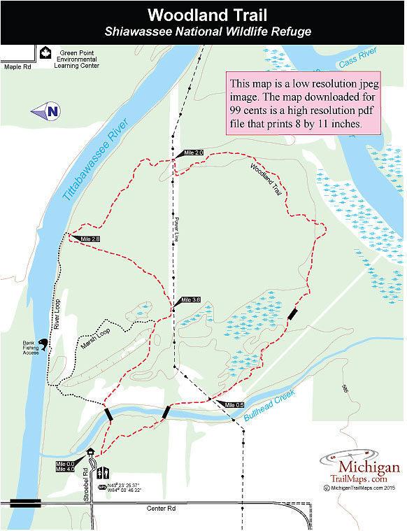 Shiawassee Wildlife Refuge Woodland Trail